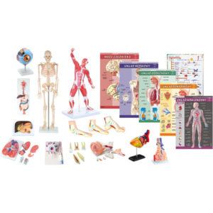 Pakiet pomocy dydaktycznych do nauki Biologii